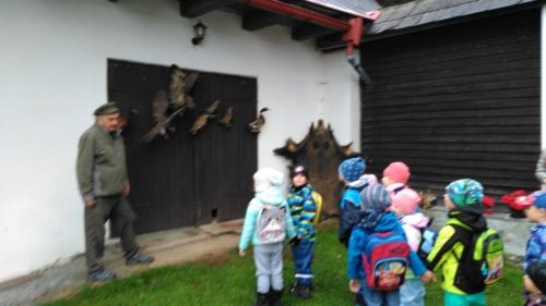 Výlet do lesa na Bukovině
